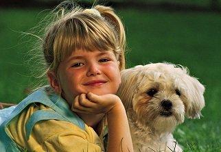 Animalele de companie – prieteni ai copiilor nostri