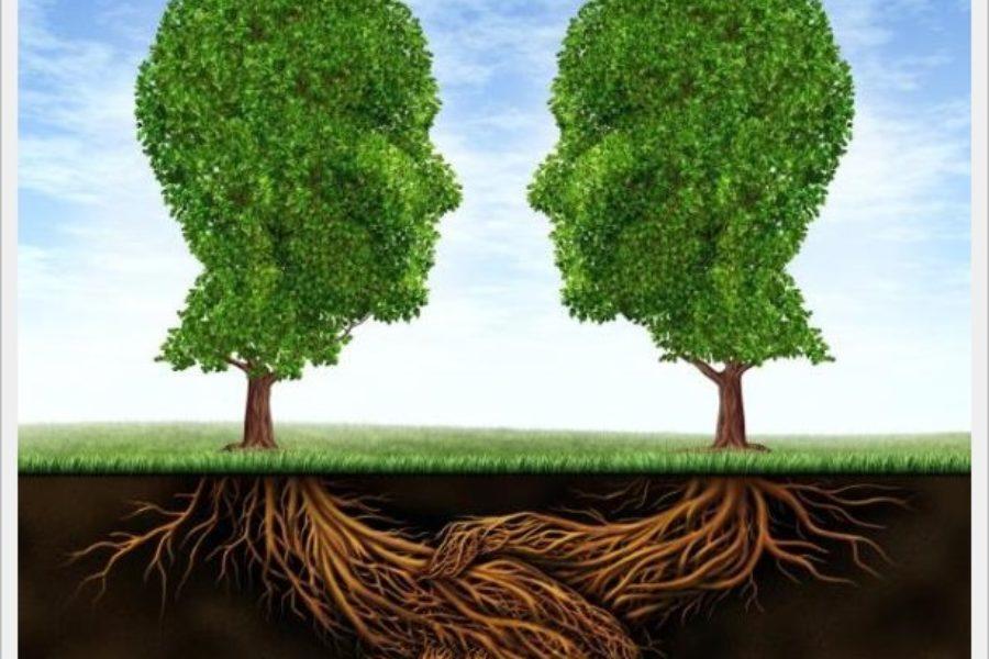 Despre psihoterapie: ce este, cum se practică şi în ce fel te poate ajuta
